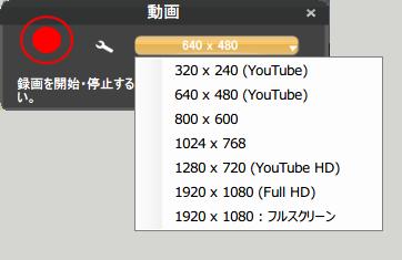 キャプチャー、動画サイズ