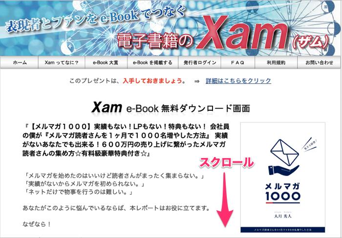 キャプチャー、Xam画面
