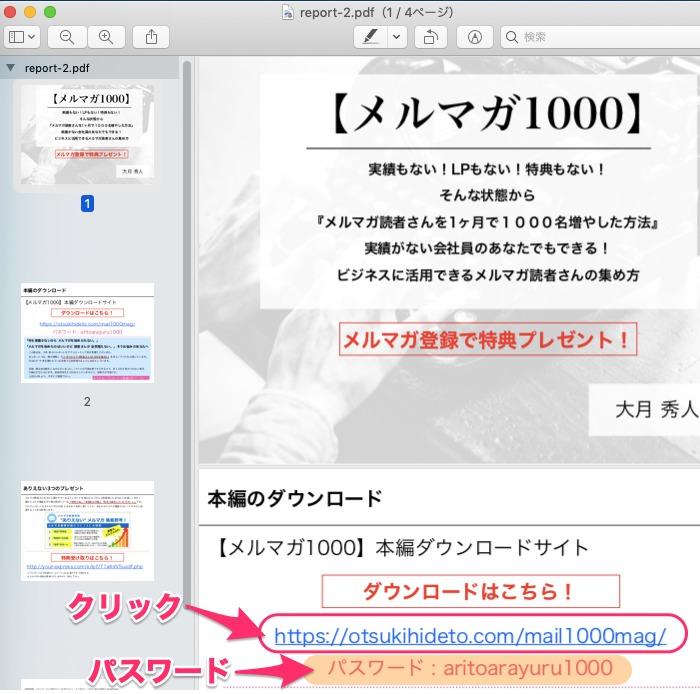 キャプチャー、PDF