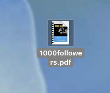 キャプチャー、PDFファイル