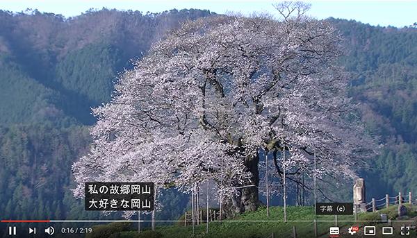 キャプチャー、YouTube字幕醍醐桜